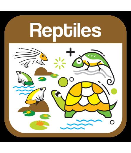 Reptiles (0)